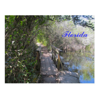 What's on the Otherside? - Florida Postcard