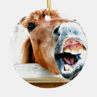 What's so funny? ceramic ornament