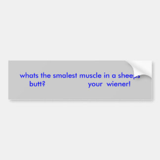 whats the smalest muscle in a sheeps butt?     ... car bumper sticker