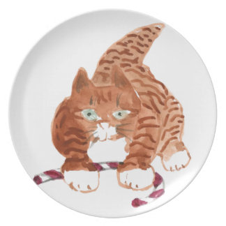 What's this thing? asks Kitten. Plate