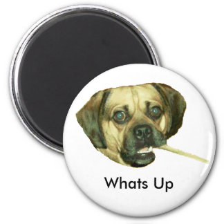 Whats Up 2 Inch Round Magnet