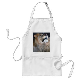 What's Up? Adult Apron