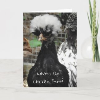What's Up Chicken Butt Funny Just Saying Hi Card