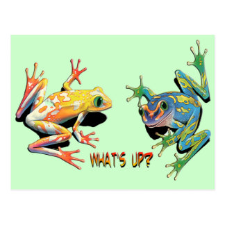 What's Up Frogs Postcard