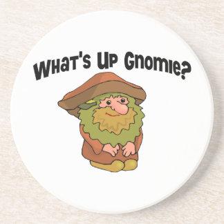 What's Up Gnomie Sandstone Coaster