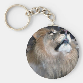 What's Up? Keychains