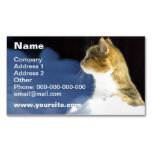 Whats Up? Magnetic Business Cards (Pack Of 25)