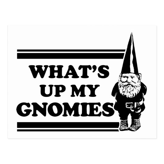 What's Up My Gnomies Postcard