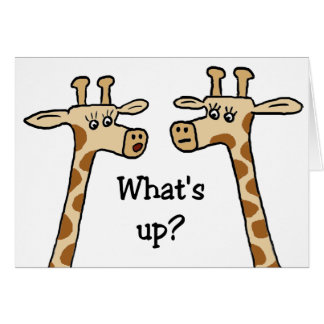 What's up? Notecards Card