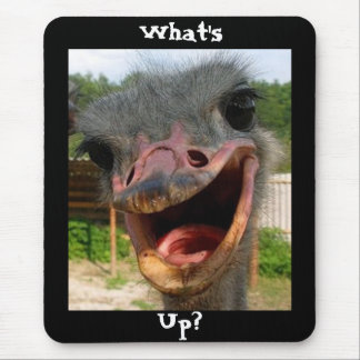 What's Up Ostrich? Mouse Pad