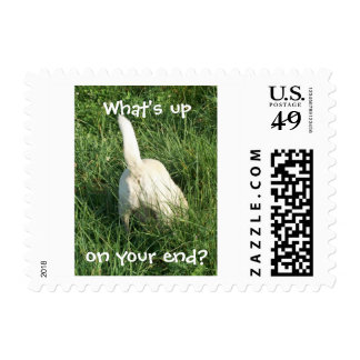 What's Up? Postage