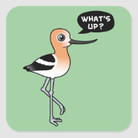 Avocet Asks: What's Up? Square Sticker
