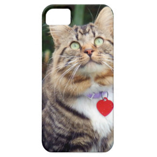 What's Up There iPhone SE/5/5s Case