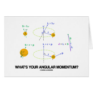 What's Your Angular Momentum? (Physics Diagrams) Cards