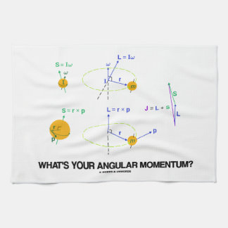 What's Your Angular Momentum? (Physics Diagrams) Towel