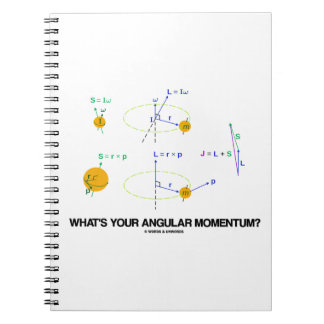 What's Your Angular Momentum? (Physics Diagrams) Note Book