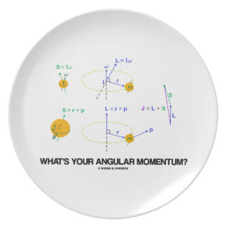 What's Your Angular Momentum? (Physics Diagrams) Party Plate