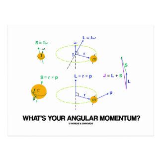 What's Your Angular Momentum? (Physics Diagrams) Postcards
