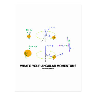 What's Your Angular Momentum? (Physics Diagrams) Postcard