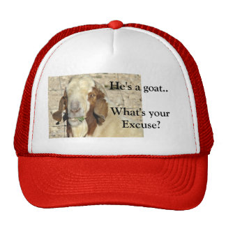 What's your excuse-customize trucker hat
