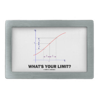 What's Your Limit? Limit Function Geek Humor Belt Buckle