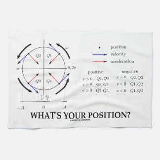 What's Your Position? (Angular Momentum) Towel
