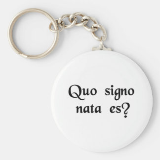 What's your sign? keychain
