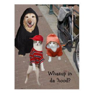 Whazup in da 'hood? postcard