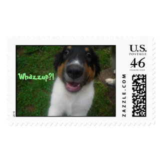 Whazzup?! postage