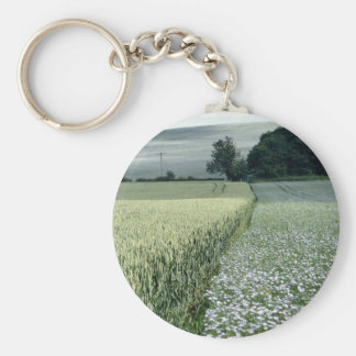 Wheat and linseed crop field, Worcestershire, U.K. Keychains