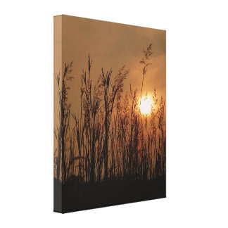 Wheat at Sunset - Vertical Canvas Print