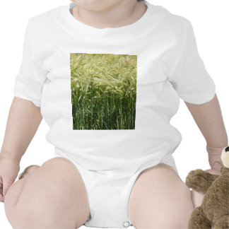 Wheat - beautiful! baby bodysuit