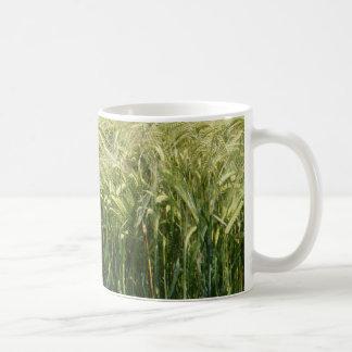Wheat - beautiful! classic white coffee mug