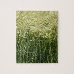 Wheat - beautiful! jigsaw puzzle