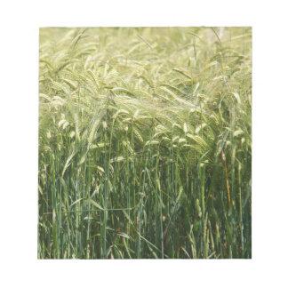 Wheat - beautiful! notepads