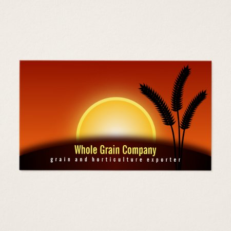 Sunset Wheat Ears Grain Exporter Horticulture Business Cards