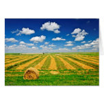 Wheat farm field at harvest stationery note card