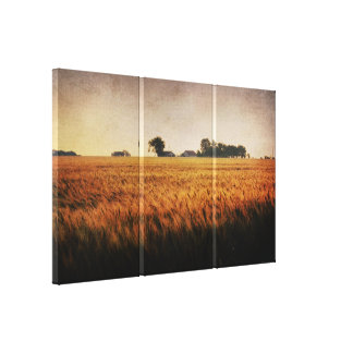 Wheat Field 3 panel wrapped canvas