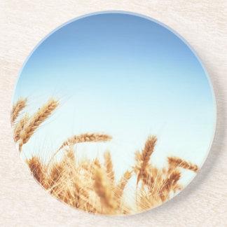 Wheat field against blue sky coasters