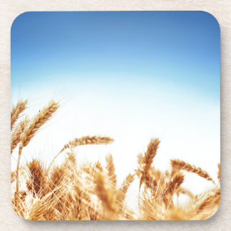 Wheat field against blue sky drink coasters