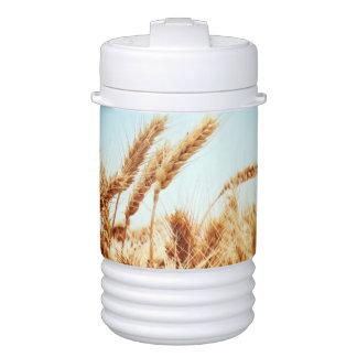 Wheat field against blue sky igloo beverage cooler