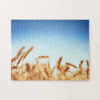 Wheat field against blue sky jigsaw puzzle