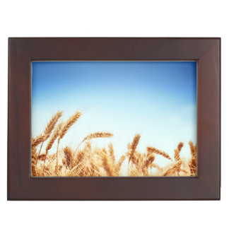 Wheat field against blue sky memory boxes