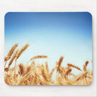 Wheat field against blue sky mousepad