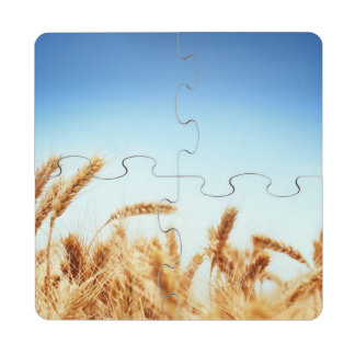 Wheat field against blue sky puzzle coaster