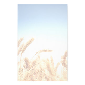 Wheat field against blue sky stationery design
