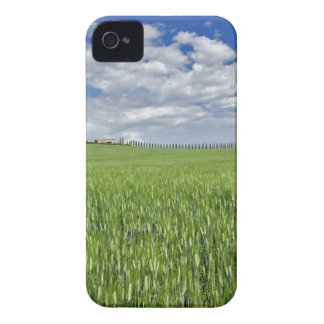 Wheat field and drive lined by stately cypress Case-Mate iPhone 4 case