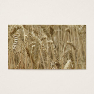 Wheat Field Business Card