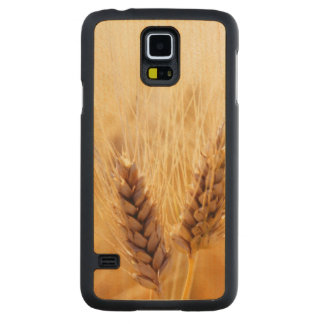 Wheat field carved maple galaxy s5 slim case