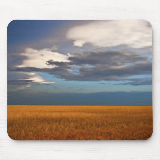 Wheat Field Fine Oil Painting Mouse pad